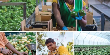 collage of people working in various aspects of agriculture